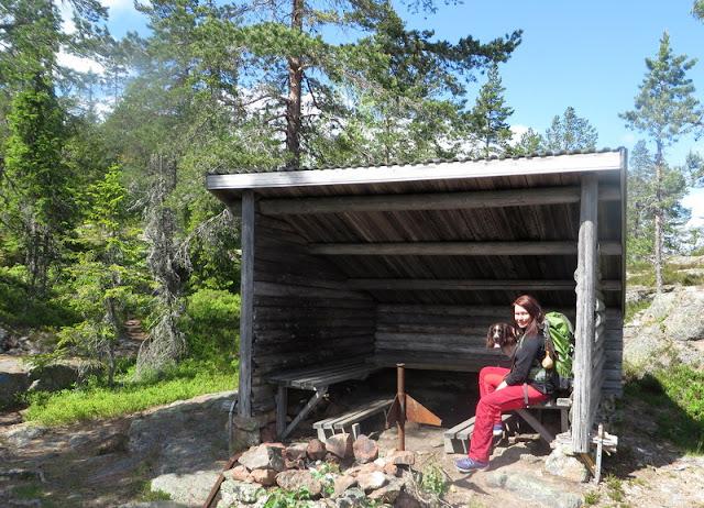 Fjällripans blogg