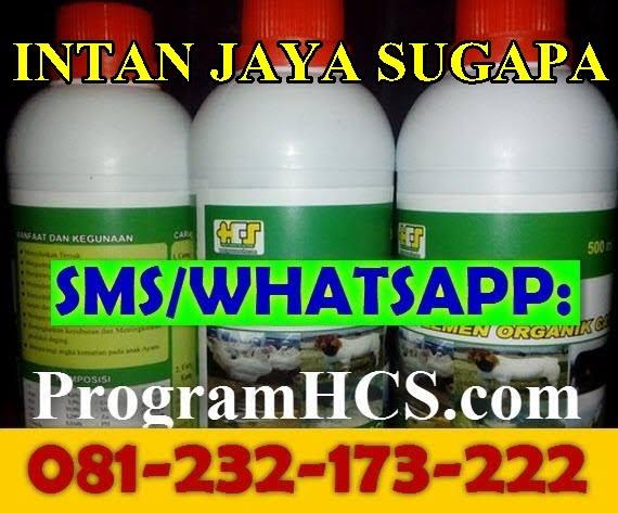 Jual SOC HCS Intan Jaya Sugapa