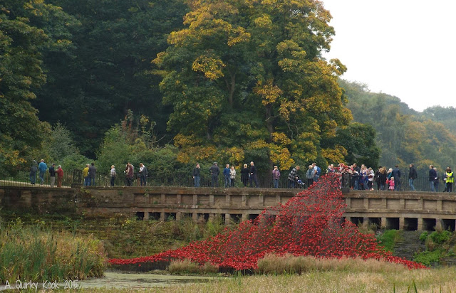 Yorkshire Sculpture Park Poppies The Wave