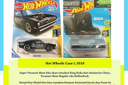 Hot Wheels Case L 2018 (GoPro Installed)
