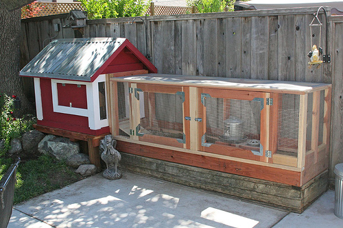 Cute chicken coop plans - photo#44