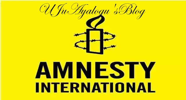 Amnesty International's report on Nigeria is biased, inaccurate, says presidency