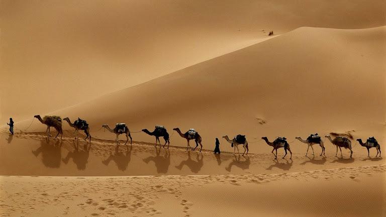 Desert HD Wallpaper