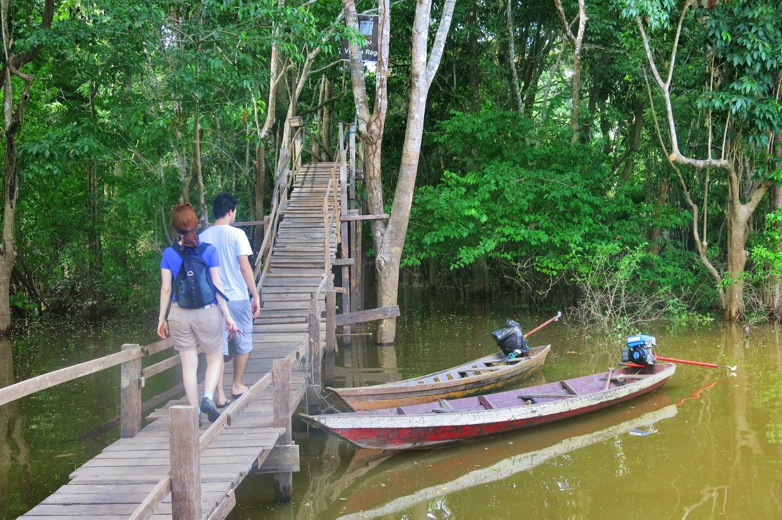 Caminhada pela floresta amazônica, próximo de Manaus