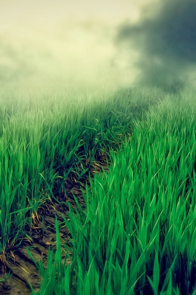 iPhone Nature HD Wallpaper Free Download | Informasi Harga