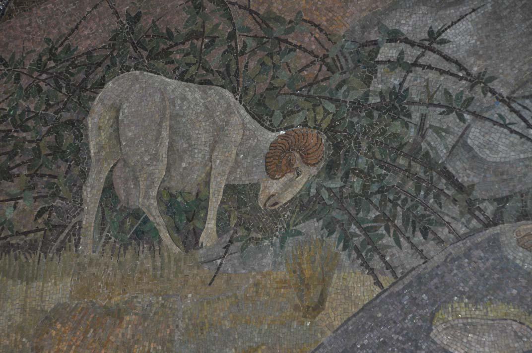 Bildergebnis für lost sheep in the thorns images