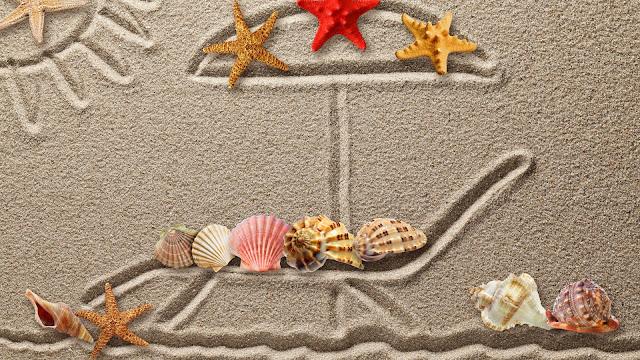 Estrellas de Mar y Caracoles en la arena