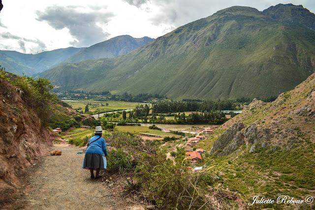 Vallée près du fleuve Urubamba, Pérou