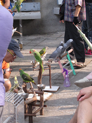 bird market hong kong how to get there
