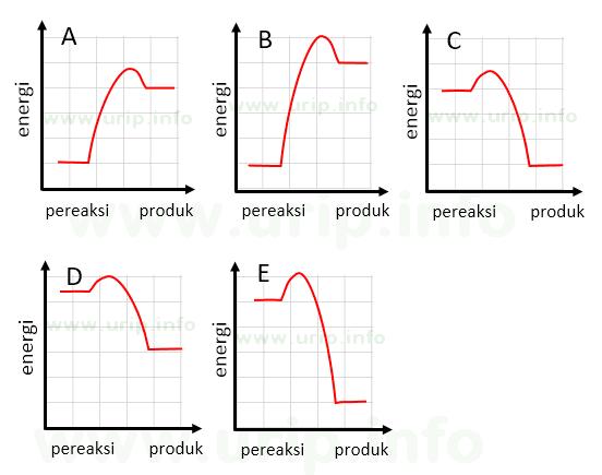 Pembahasan soal tentang profil diagram energi urip dot info secara energitika produk yang stabil adalah produk reaksi ekosotermis dengan kata lain energi produk jauh lebih rendah dibanding energi pereaksi diagram ccuart Gallery