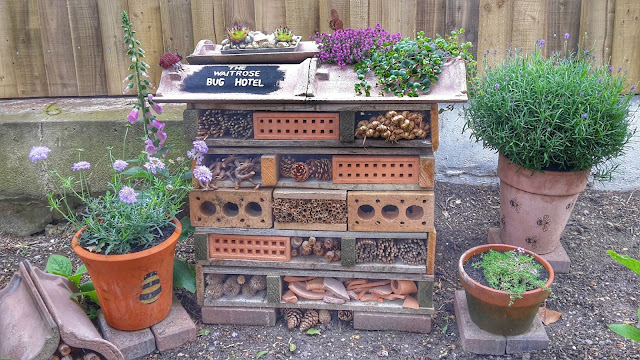 Project 366 2016 day 177 - Waitrose bug hotel // 76sunflowers