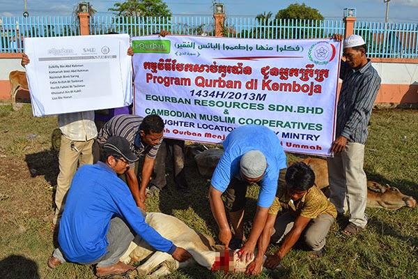 Pelaksanaan ibadah qurban di Kemboja oleh eQurban.com
