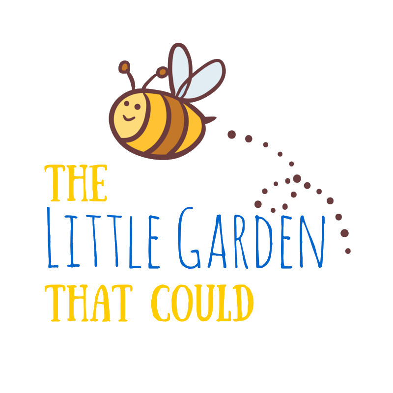 The Little Garden That Could