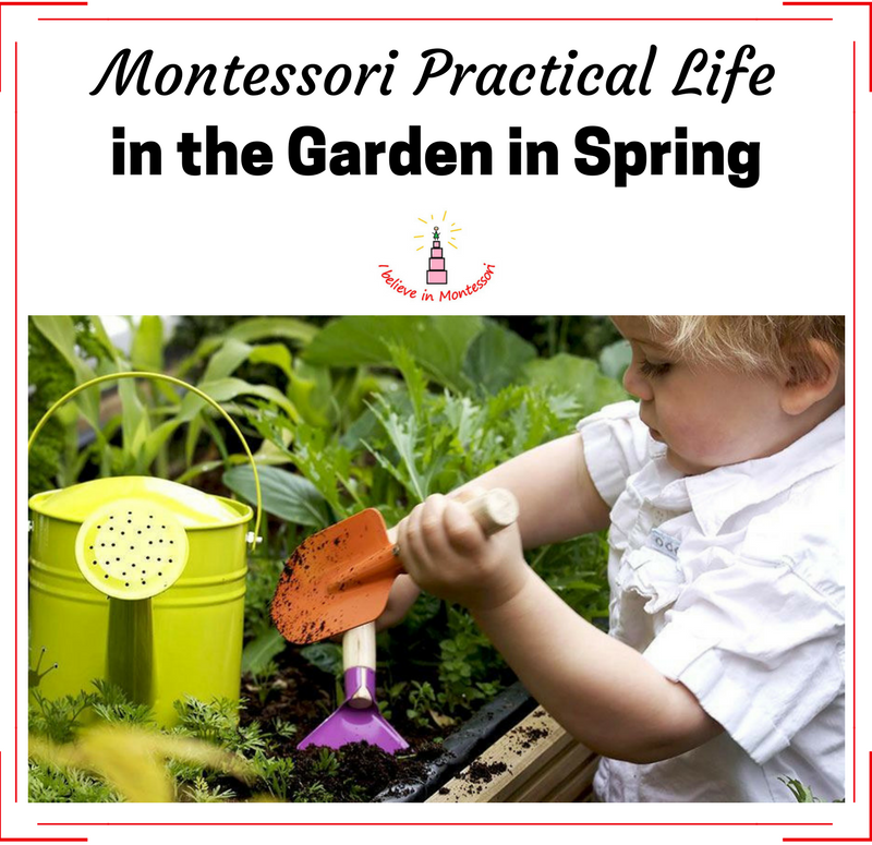 montessori practical life August 2012 newsletter from the michael olaf montessori company.