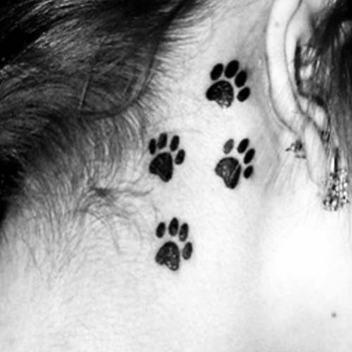 kulak arkası pati dövmesi behind ear paw tattoo
