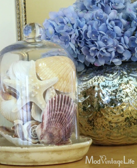 Cloche Decor Idea with Seashells