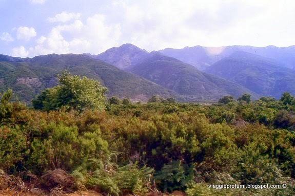 Samotracia, monti del Saos e Fèngari