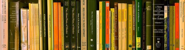 Bibliografía de briófitos con hincapié en floras