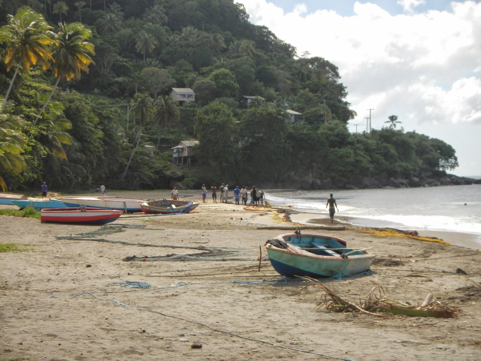 Dusquene Bay