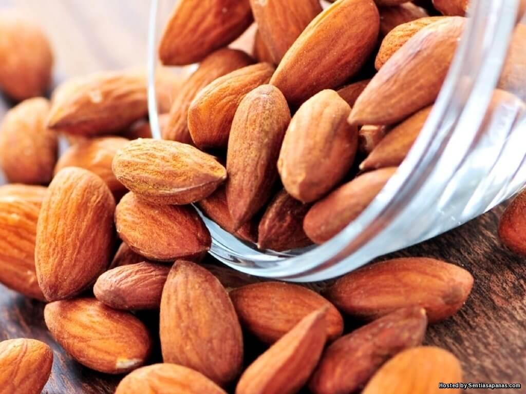 Khasiat Badam untuk Diabetes Dan  Batu Karang