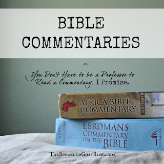 Bible commentaries suggestions and how to use them