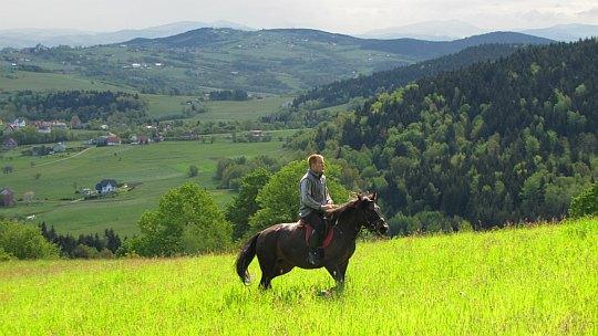 Jeździec na stokach wzniesienia Golec.