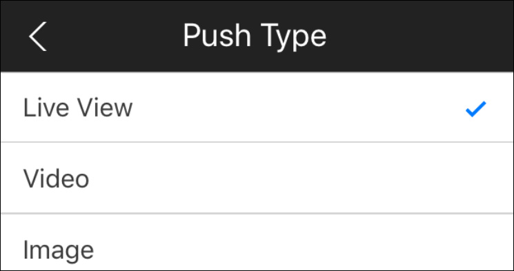 Push notifications gdmss idmss