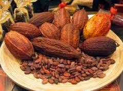 yah siapa yang tak kenal makanan yang satu ini Kandungan Nutrisi Coklat