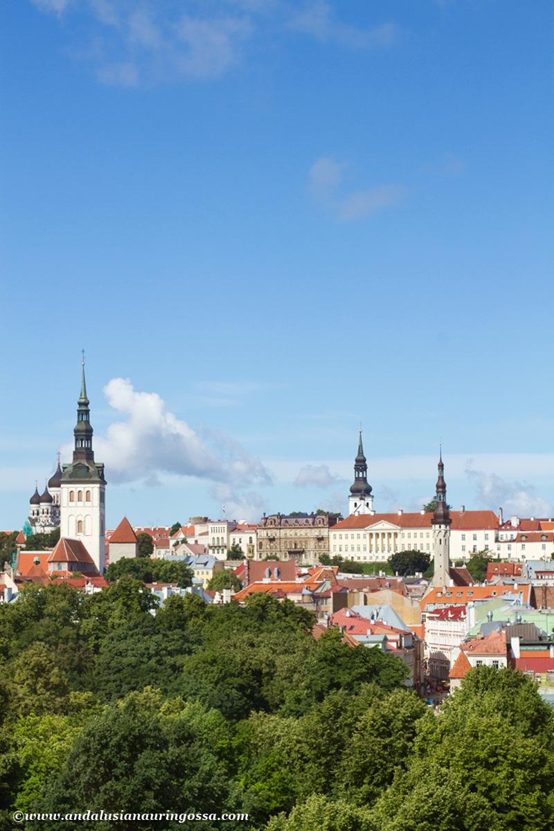Tallinnan vanha kaupunki 4