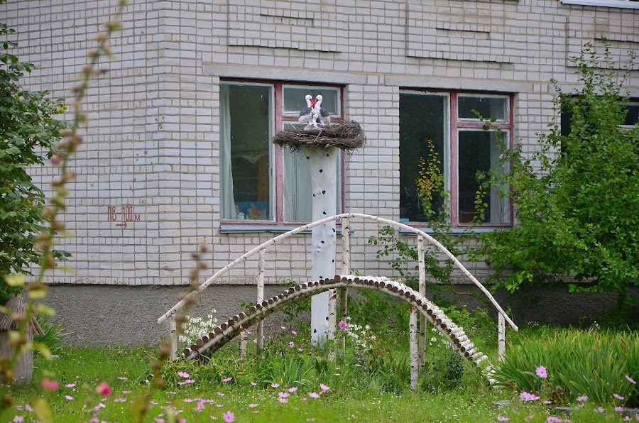 Школа. Село Вересы