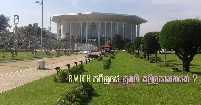 https://www.gossiplankanews.com/2018/11/bmich-dog-masscare.html#more