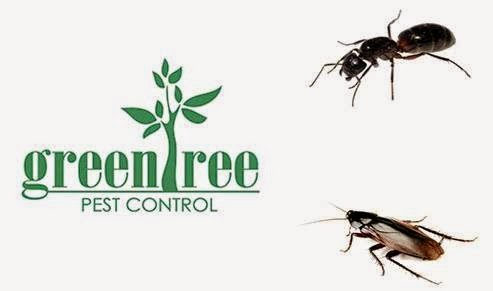 Green Tree Pest Control