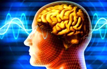 Sejumlah Makanan Pendongkrak Kecerdasan Otak