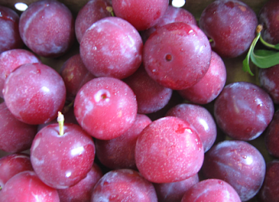 Aloo Bukhara (Plums) Benefits