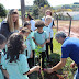 Projeto de arborização urbana inicia em Porto Barreiro no Dia da Árvore