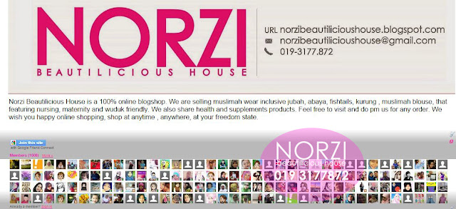 Macamana nak tingkatkan follower di blog , ramainya pengikut Norzi Beautilicious House