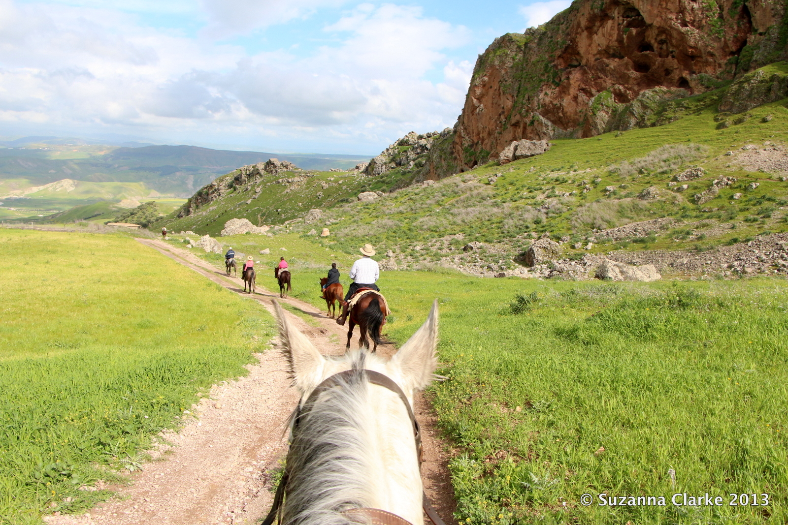 Essay horse riding