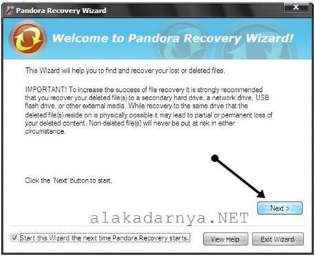 Rimba Mengembalikan File Yang Terhapus Dengan Pandora Recovery