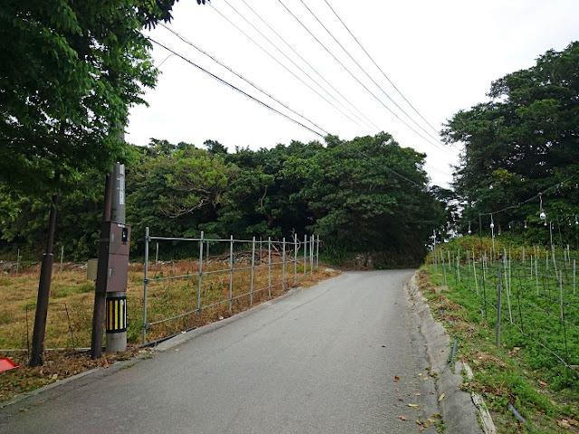 糸洲第二外科壕の写真