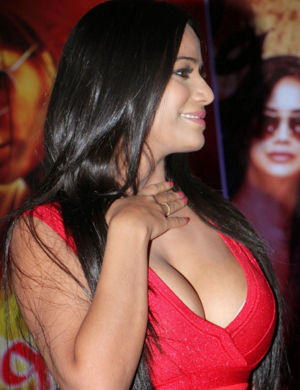 Poonam Pandey Sexy Nip-Slip - Kk2B  Hot Celebrity Pictures-5739
