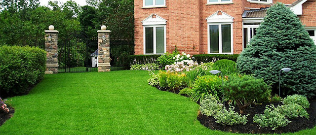A Short Article about the advantages of Artificial Grass against the Natural Grass