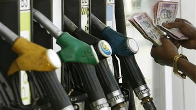 What will happen to petrol and diesel cars in the coming years?