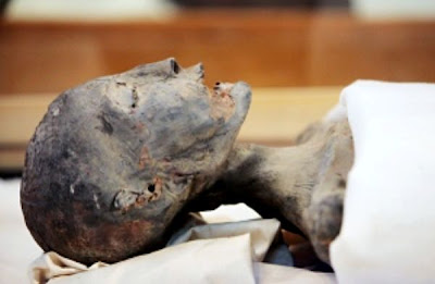 Egyptian mummies yield their genetic secrets