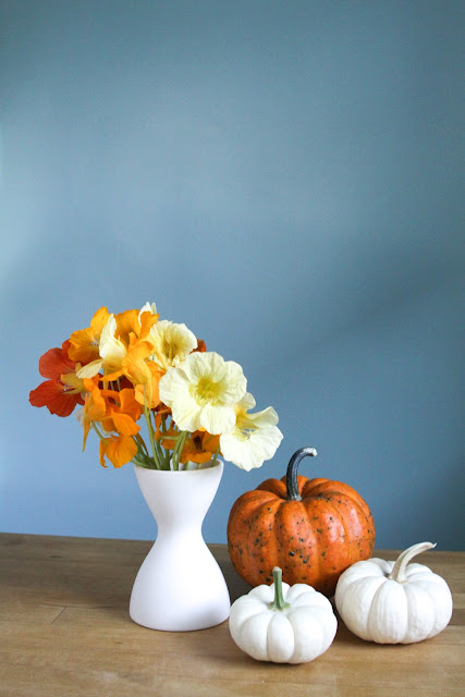 pumpkins, nasturtiums, autumn, Anne Butera, My Giant Strawberry