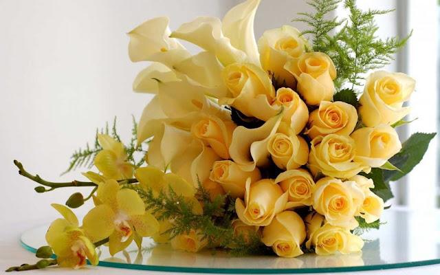hoa hồng vàng đẹp nhất thế giới