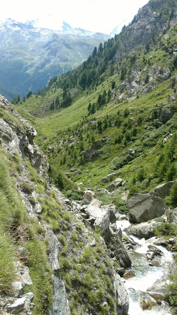 a fast moving stream rushes down the mountain slope