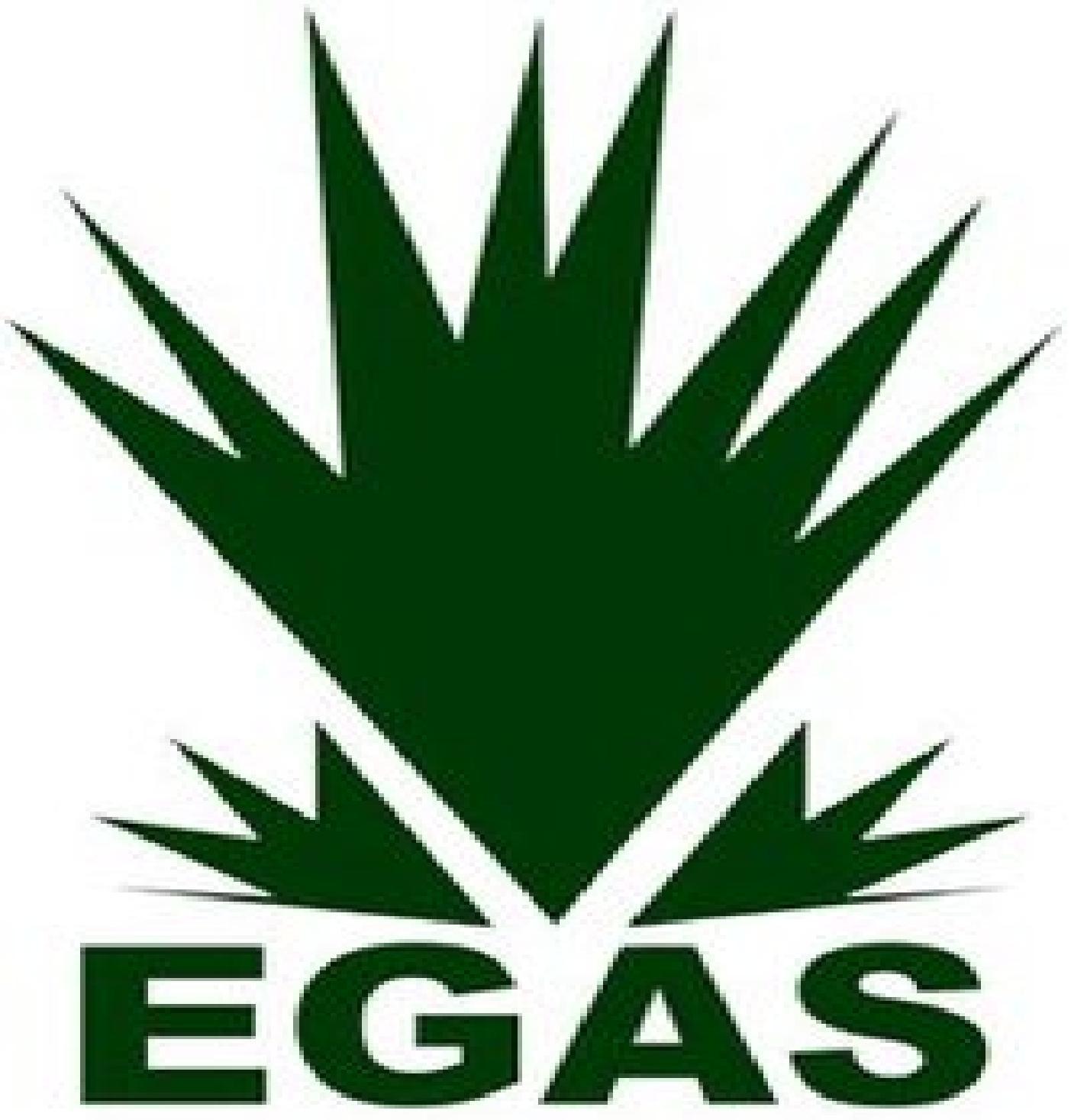 Egyptian Natural Gas Holding Company Egas