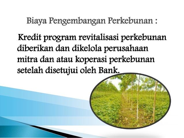 Pinjaman Uang KPEN-RP untuk Petani Hebat