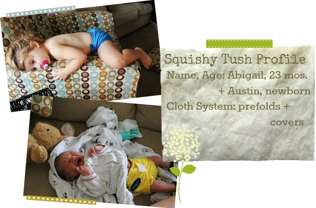cloth diapers, econobum, imagine, flip, green mountain diaper, thirsties