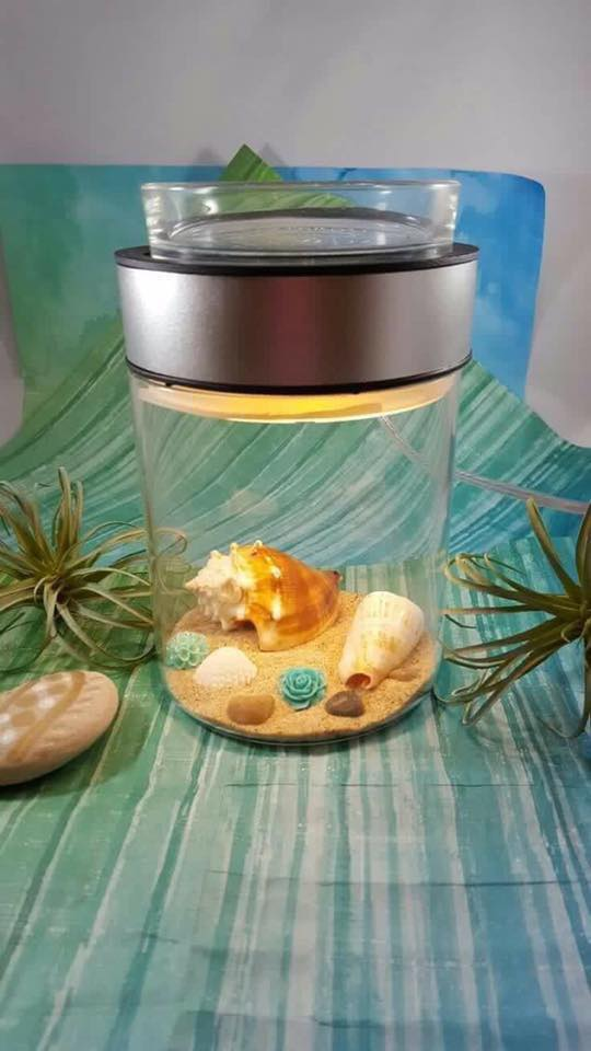 Lynne Biniker ~ Independent Scentsy Consultant: Make a Scene